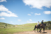 horse trekking at stone hill